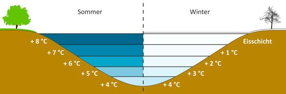 klassewasser.de Anomalie des Wassers - Jugendliche
