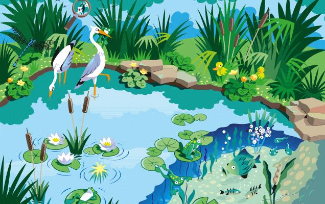 Der teich kinder for Welche fische in teich