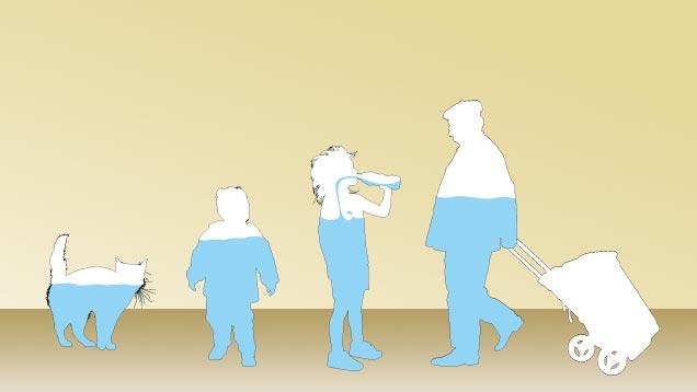 Zu wie viel prozent besteht der mensch aus wasser