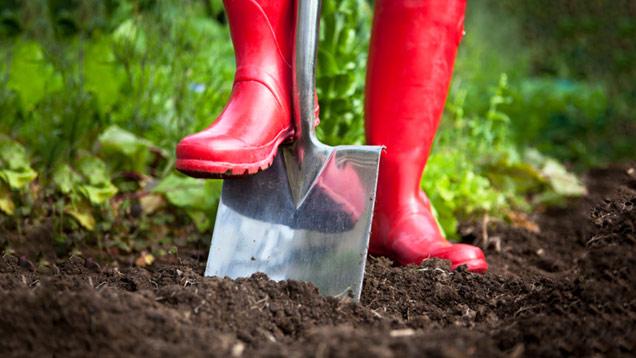 Dachterrasse bepflanzen Frühling wichtige Gartenarbeit