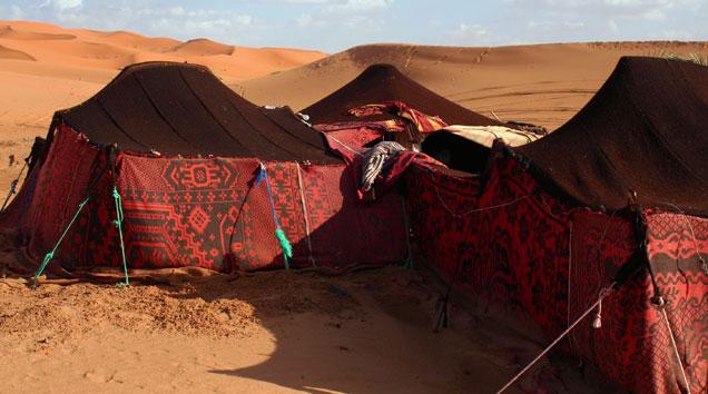 wüste für kinder erklärt